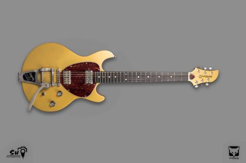 custom, goldtop, Bigsby, Lollartron